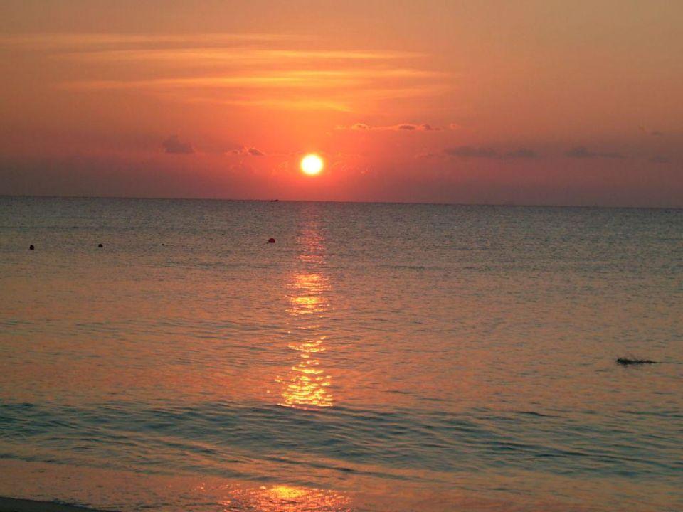 Sonnenaufgang Strand RIU Yucatan Hotel Riu Yucatan