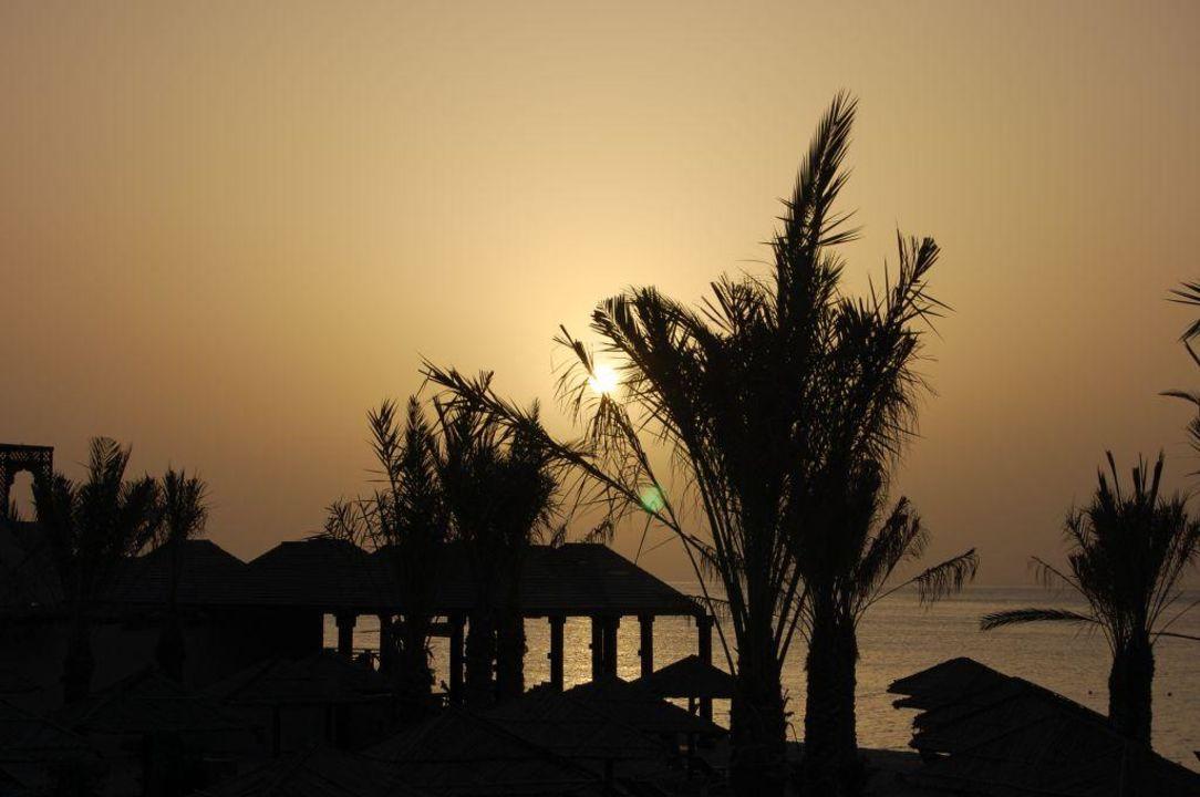 Sonnenaufgang Miramar Al Aqah Beach Resort