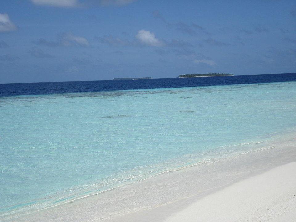 Blick auf die Versorgerinsel von Vilu Sun Aqua Vilu Reef Maldives