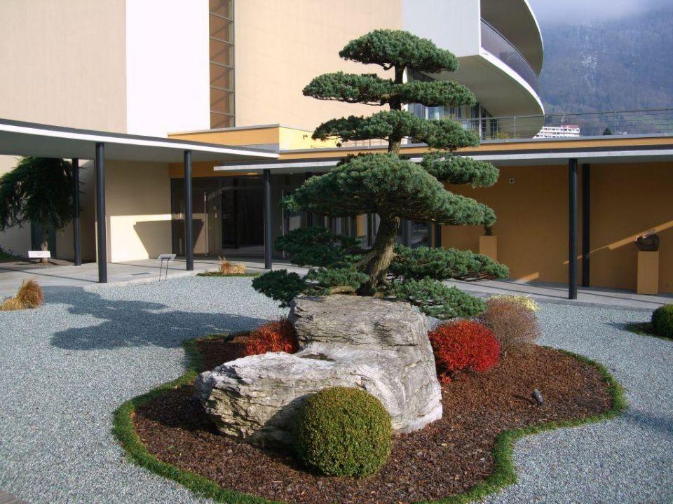 bonsai garten hotel park weggis geschlossen weggis. Black Bedroom Furniture Sets. Home Design Ideas