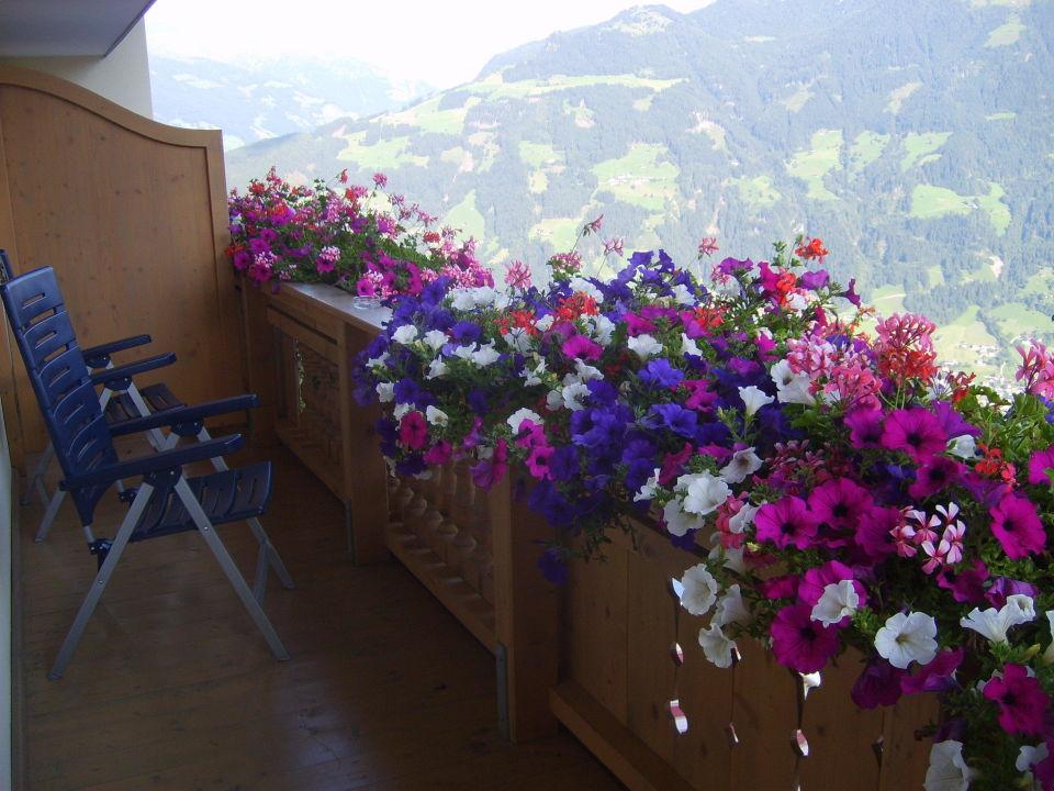 balkon österreich