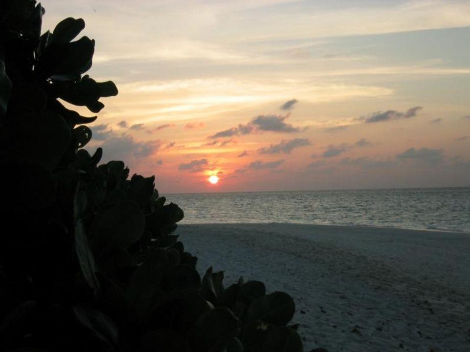 Sonnenuntergang Hotel Fihalhohi Island Resort