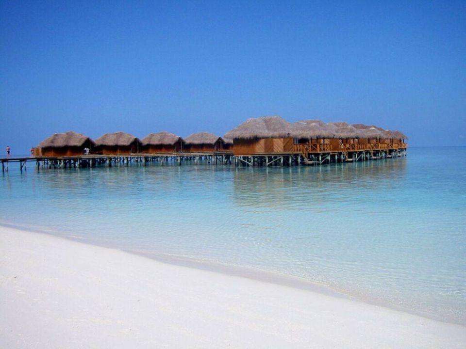 Fihalhohi Wasserbungalows Hotel Fihalhohi Island Resort
