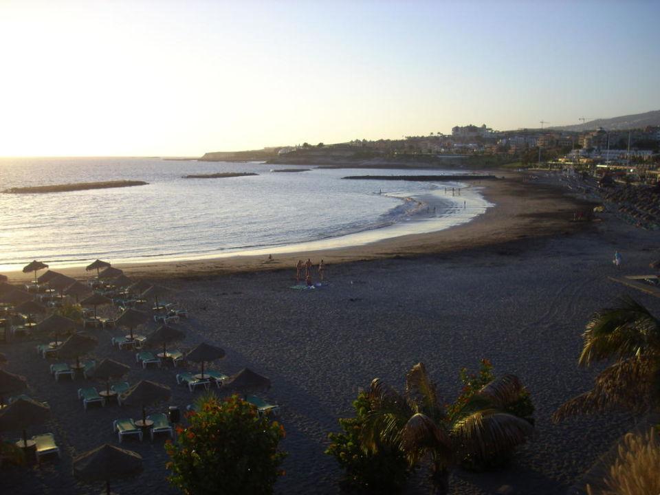 Grosser Strand In Der Nahe Allsun Hotel Los Hibiscos Costa Adeje