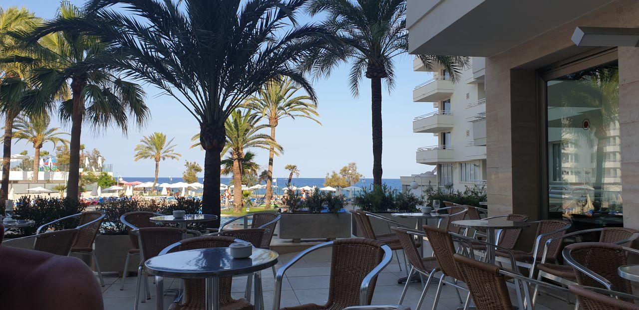 Gartenanlage Aparthotel Playa Dorada