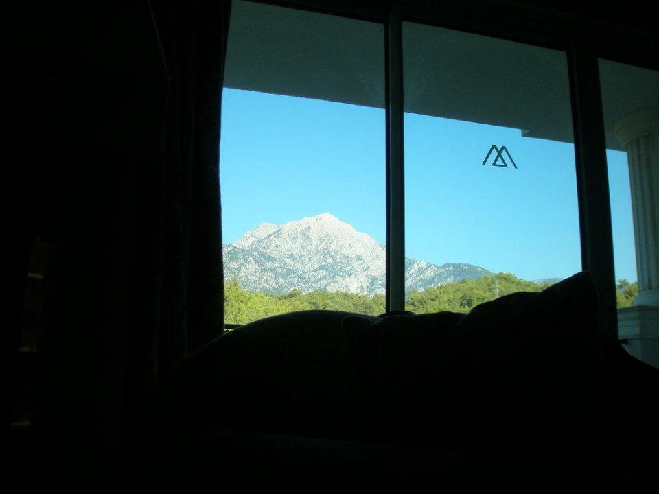 Aussicht aus dem Bett Amara Dolce Vita Luxury