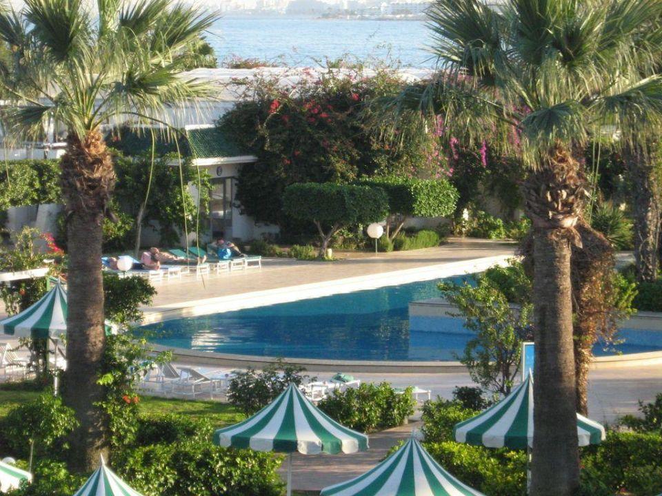 Bild gartenanlage mit pool zu hotel hasdrubal thalassa - Gartenanlage mit pool ...