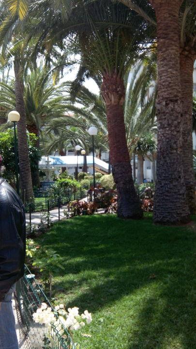 Jardin Hotel Surycan