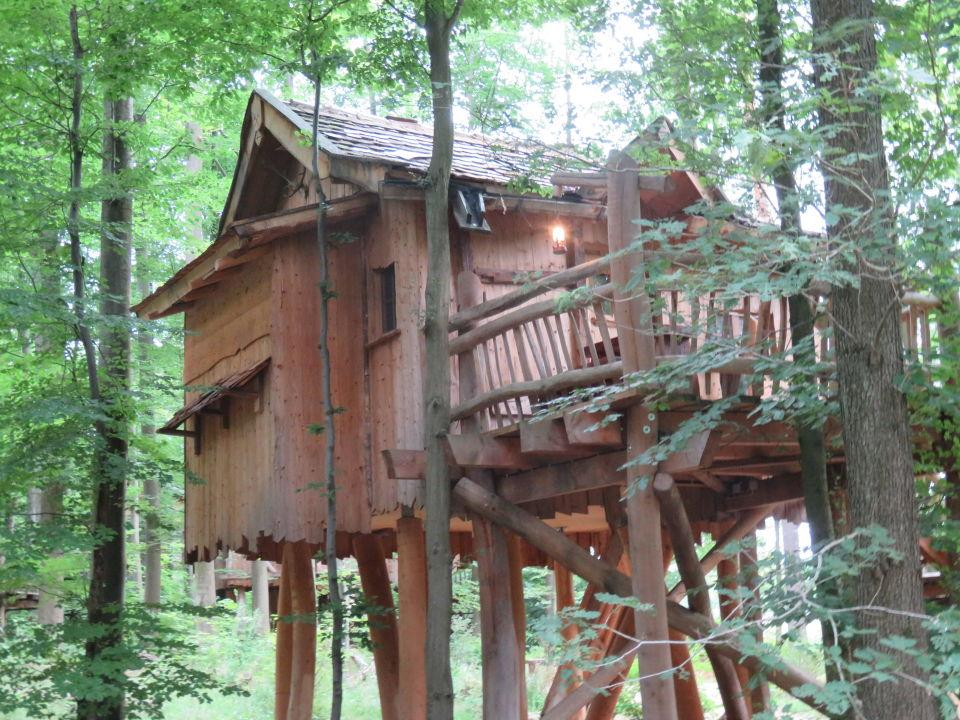 baumhaus ii natur resort tripsdrill baumh user cleebronn holidaycheck baden w rttemberg. Black Bedroom Furniture Sets. Home Design Ideas