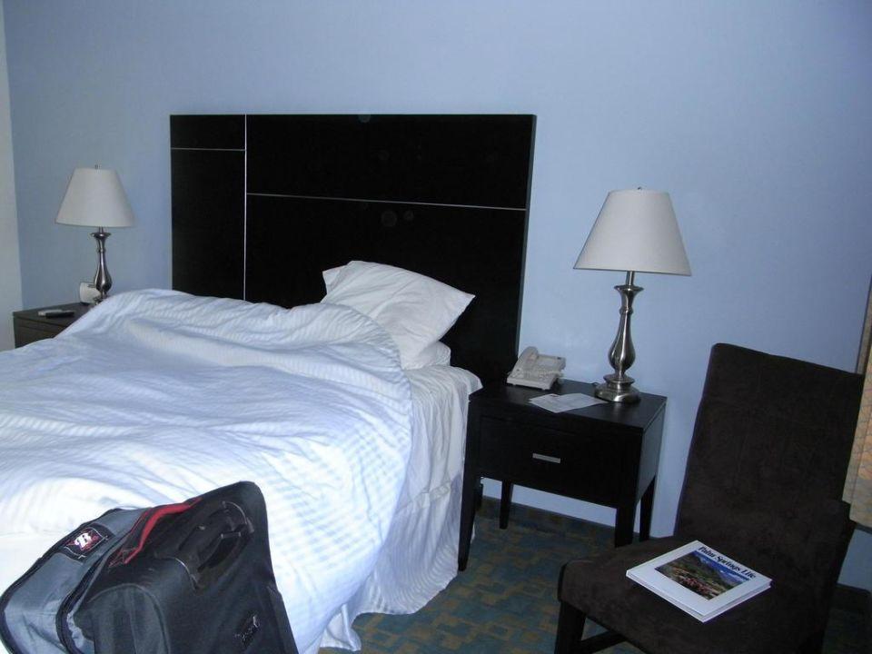 Zimmer Erdgeschoss The Curve Palm Springs Hotel