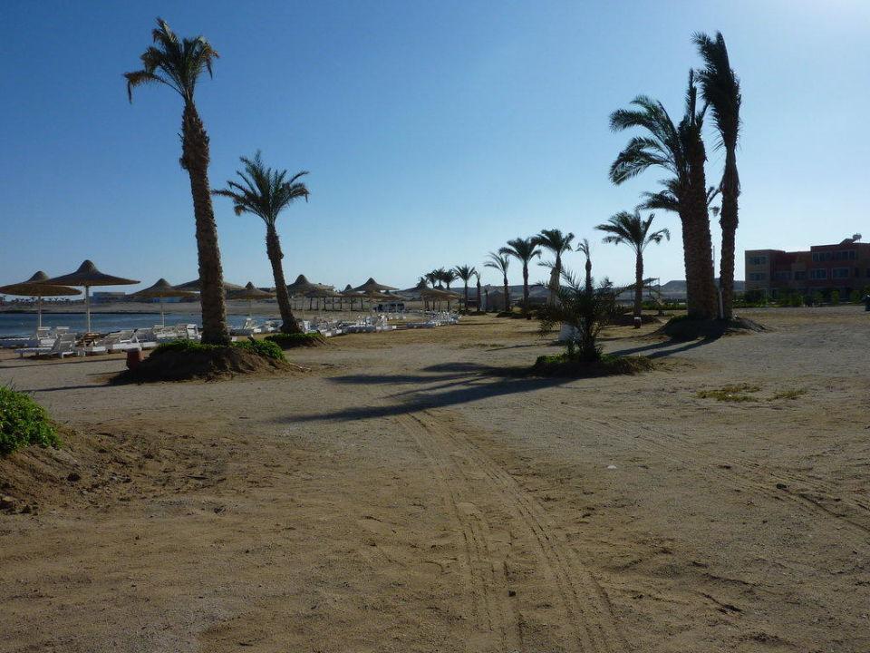 Strandbereich Einstieg Bucht Paradise Club Shoni Bay