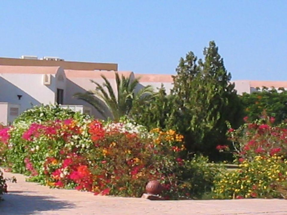 Garten Sunrise Crystal Bay Resort