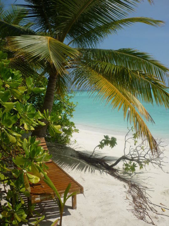Strand vor Bungalow Sun Island Resort & Spa