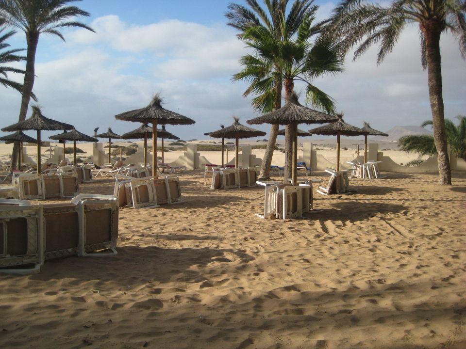 Strandbereich am haupthaus hotel riu oliva beach for Riu oliva beach village