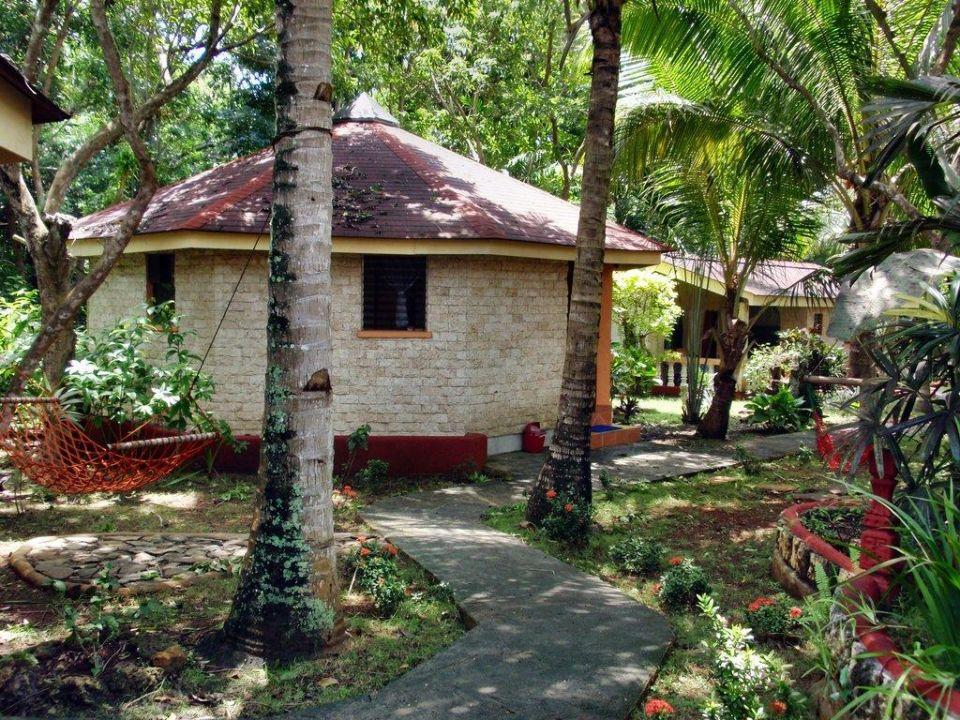 Bild Family Cottage Zu Hotel Alona Land In Panglao