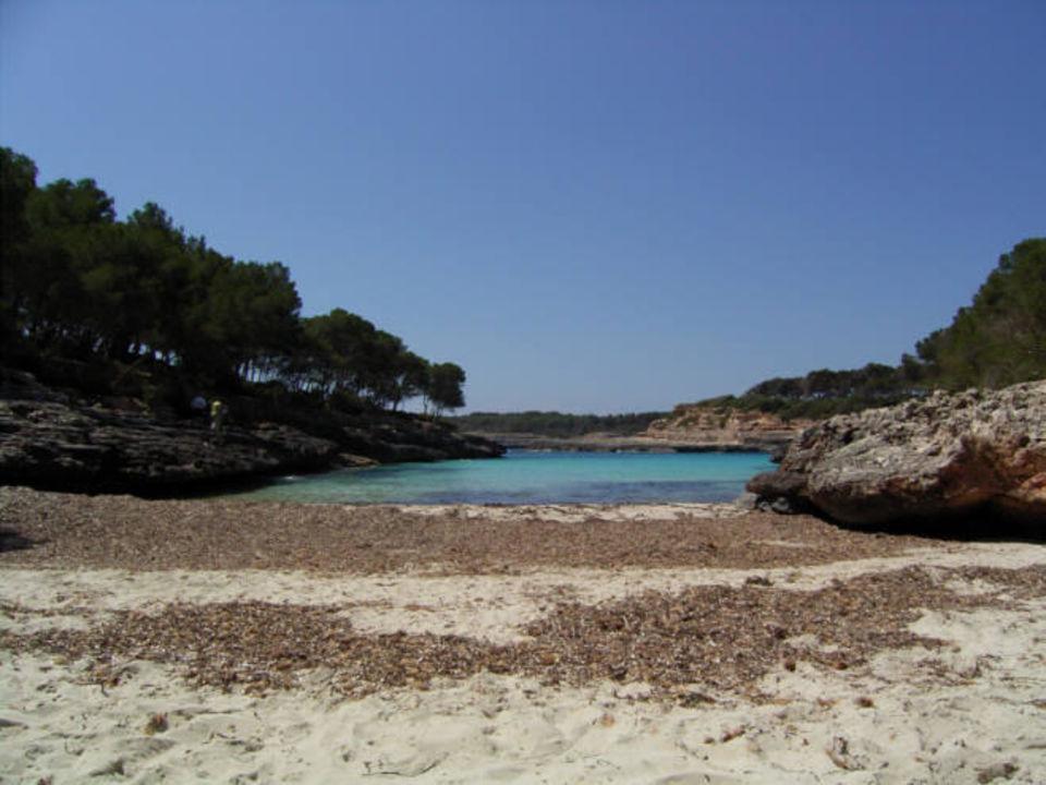 Hotelbucht IBEROSTAR Club Cala Barca