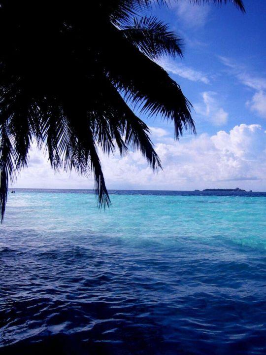 Urlaubs - Impression Fihalhohi Hotel Fihalhohi Island Resort