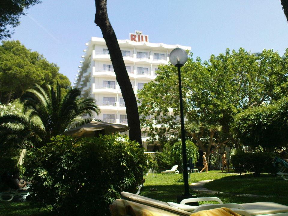 Quot Blick Auf Das Hotel Vom Garten Aus Quot Hotel Riu Festival