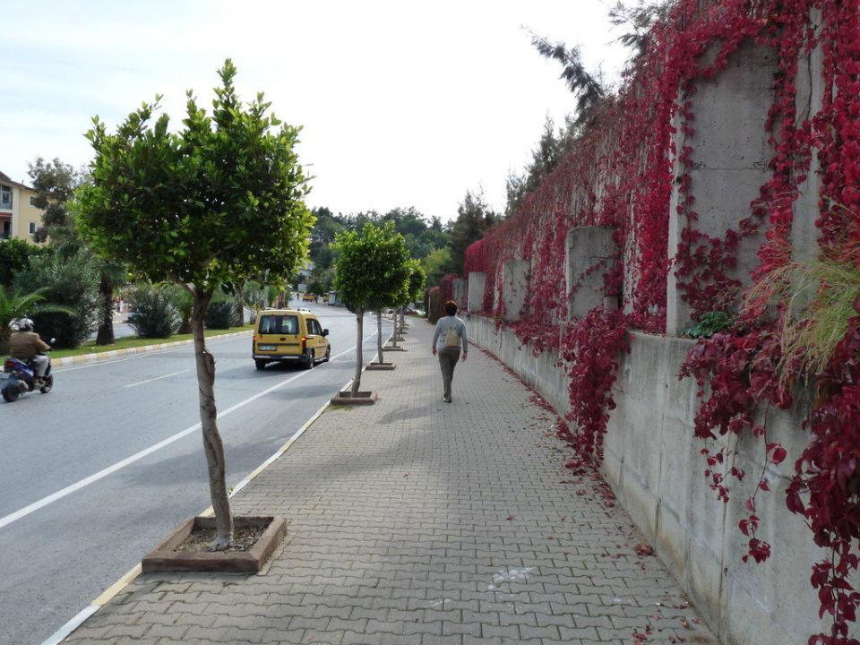 Straße vor dem Hotel Defne Star Hotel Defne Star