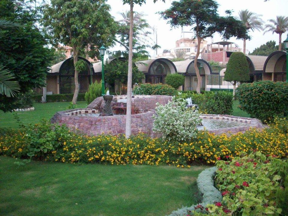 Blick in den Garten The Oasis Hotel Pyramids