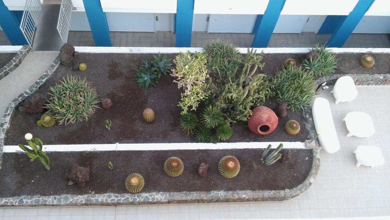 Gartenanlage Apartments Dolores