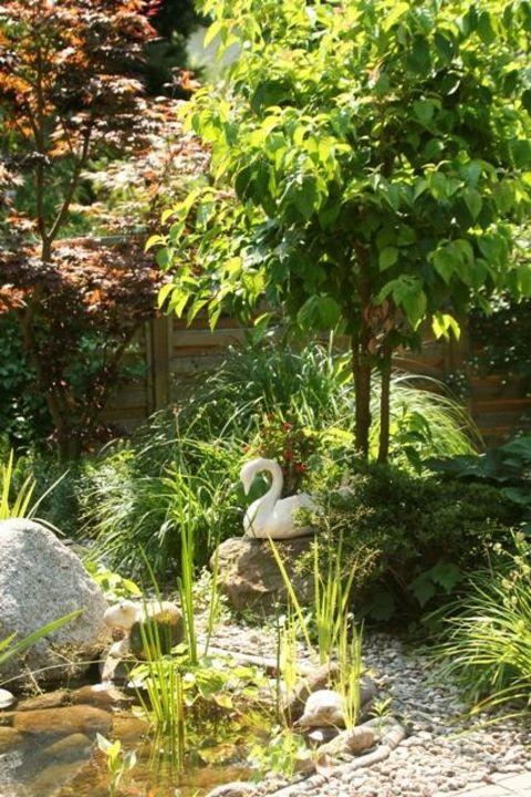 Romantischer Teich im Garten mit Springbrunnen Hotel Schönbrunn