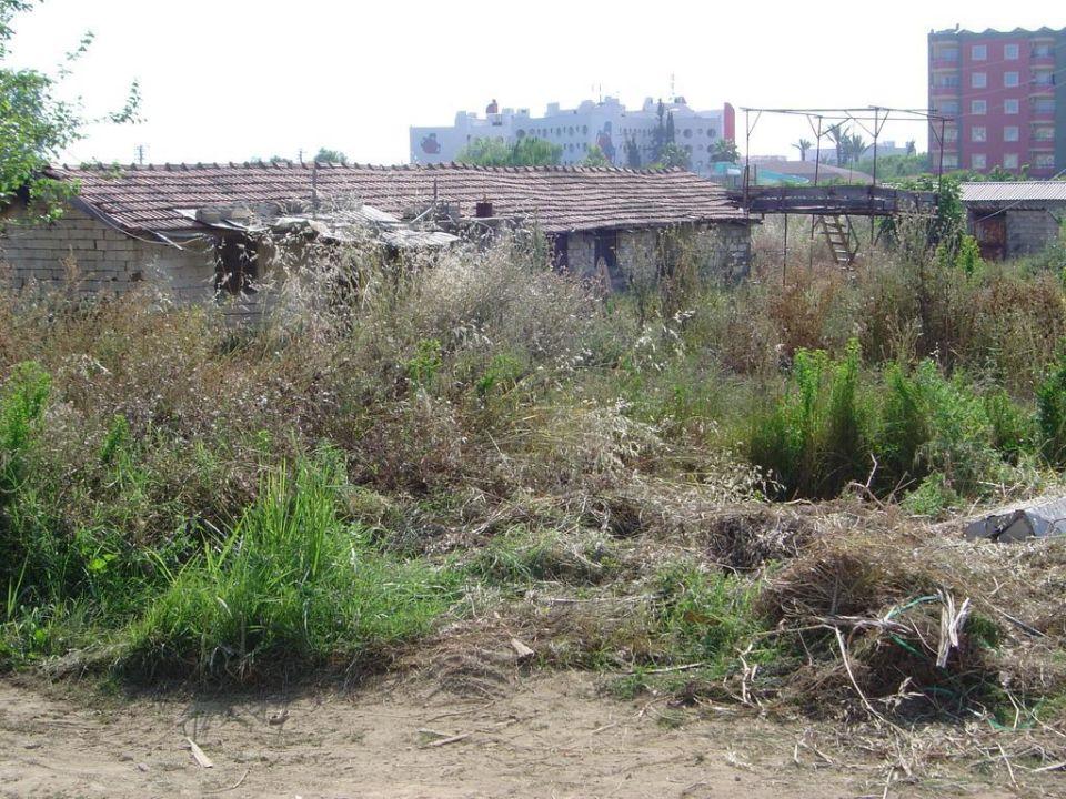 Einheimisches Gebäude direkt neben dem Hotel Hotel Titan Garden