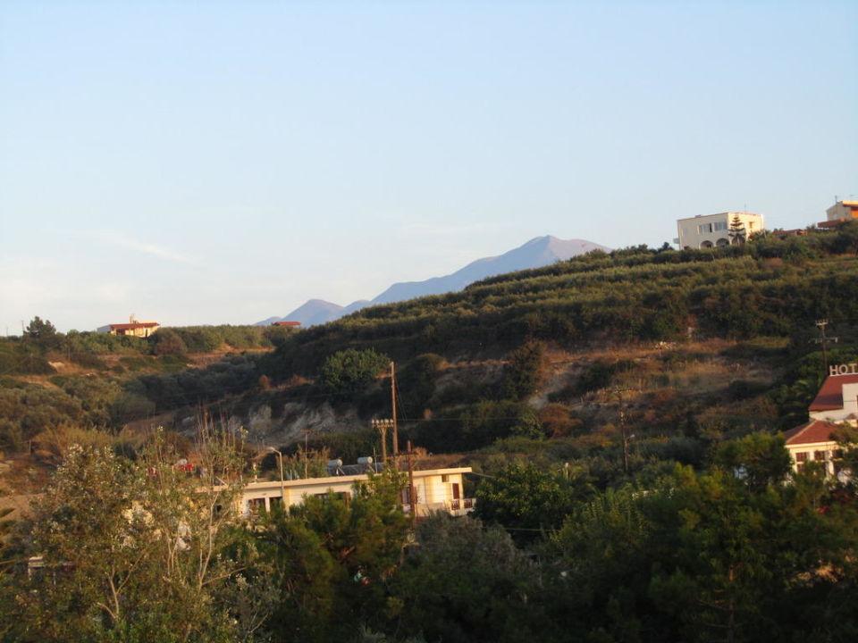 Superschön Hotel Creta Star