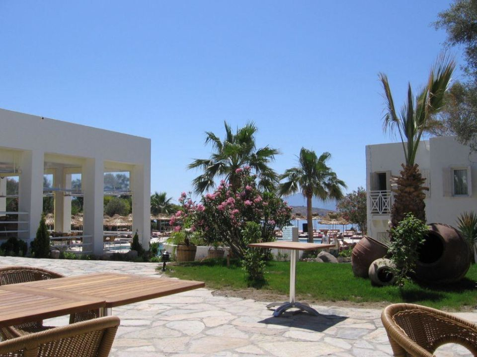 Blick vom Essbereich auf Pool Rexene Resort Hotel