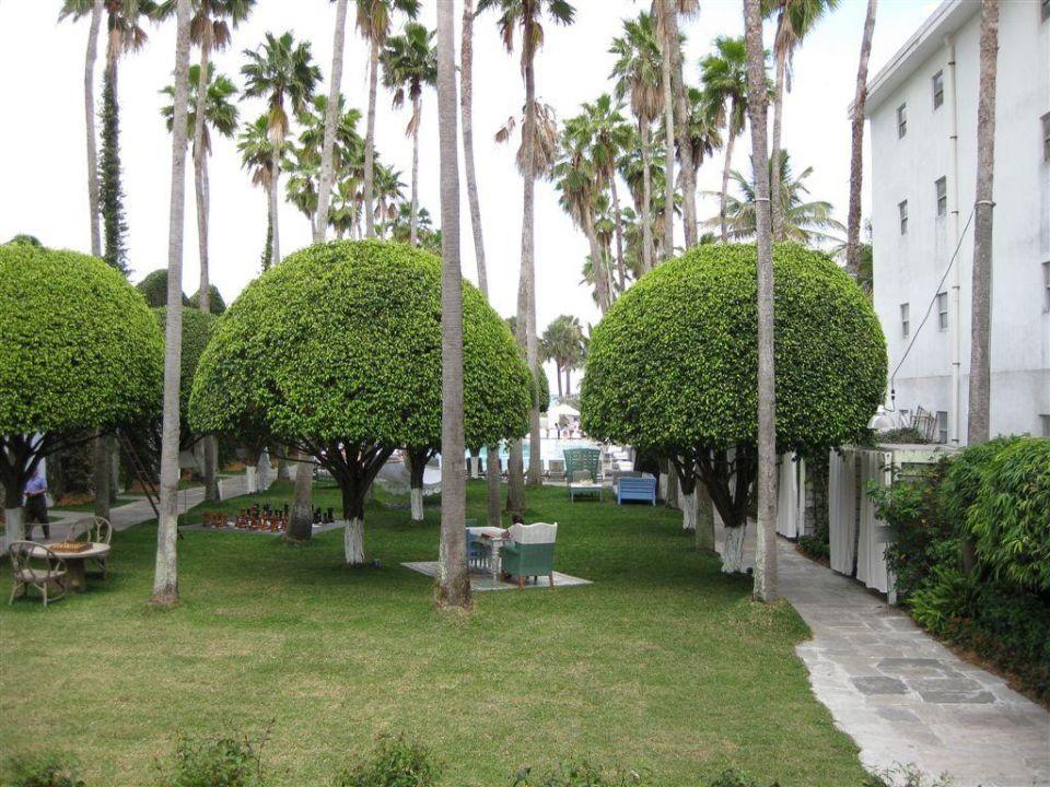 Garten Hotel Delano