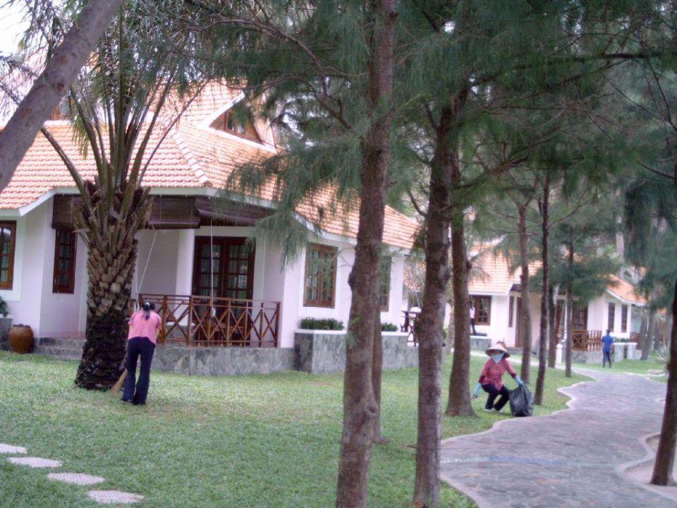 Der Wald wird gefegt Hotel Phu Hai Resort