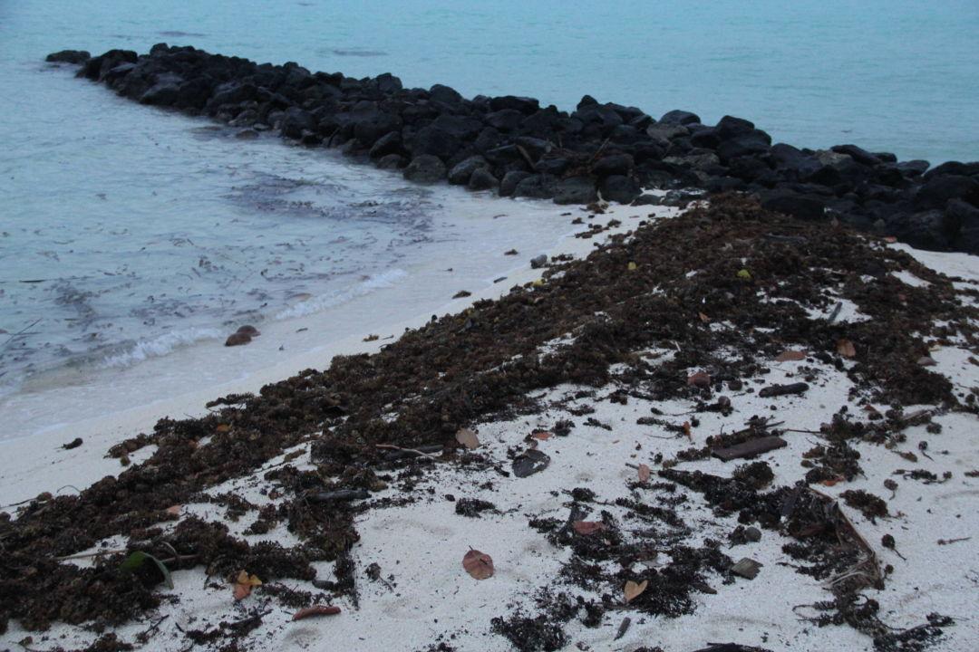 Je nach dem wer es so mag Bora Bora Pearl Beach Resort & Spa