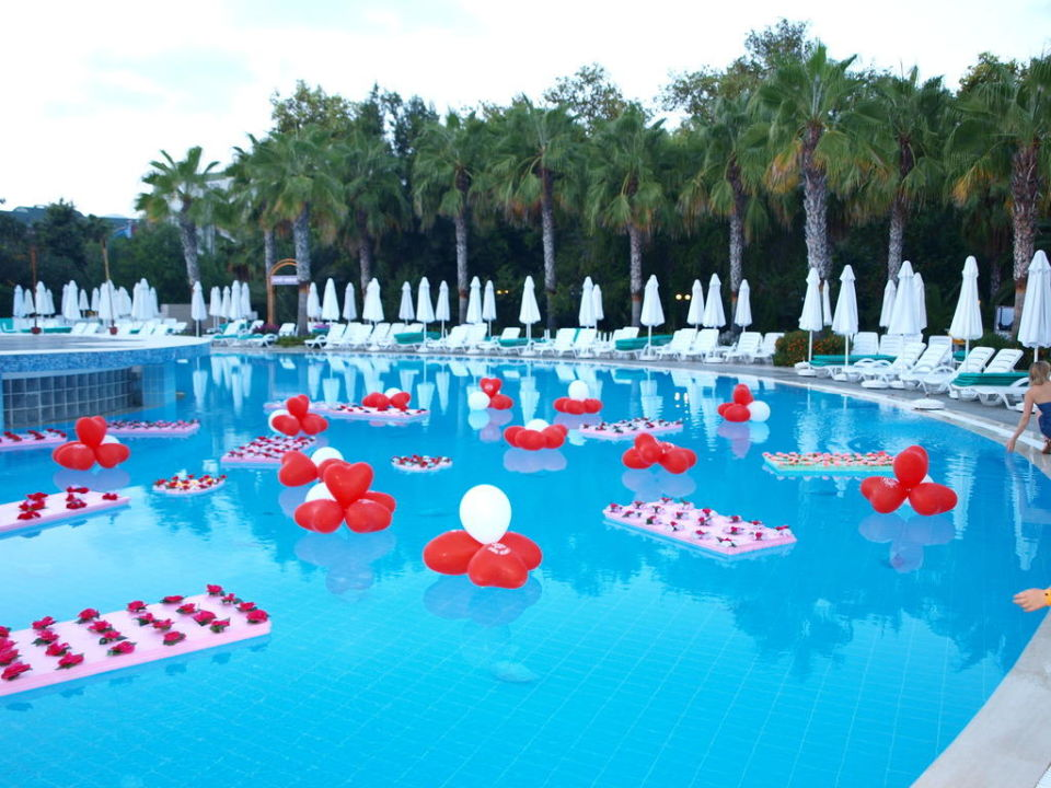 Nice Love Night Pool Deko Botanik Hotel U0026 Resort