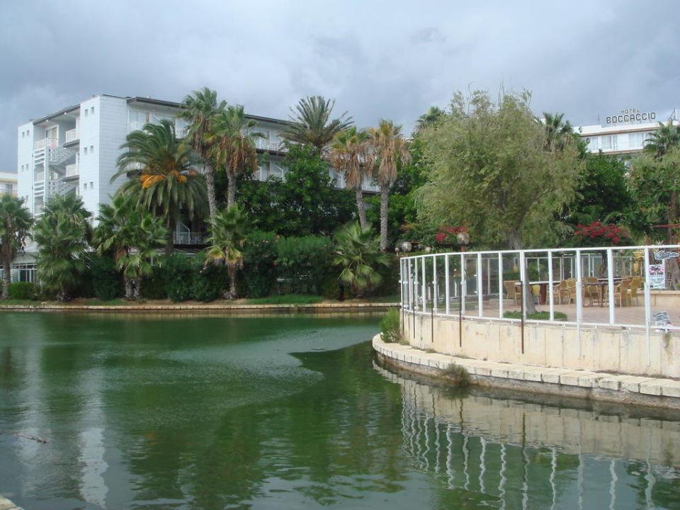 Schöne Gartenanlage Hotel Roc Boccaccio (Vorgänger-Hotel - existiert nicht mehr)