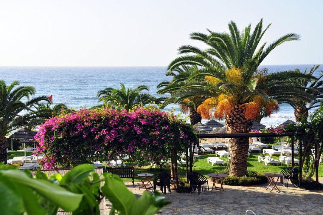 Farben Hotel Alion Beach