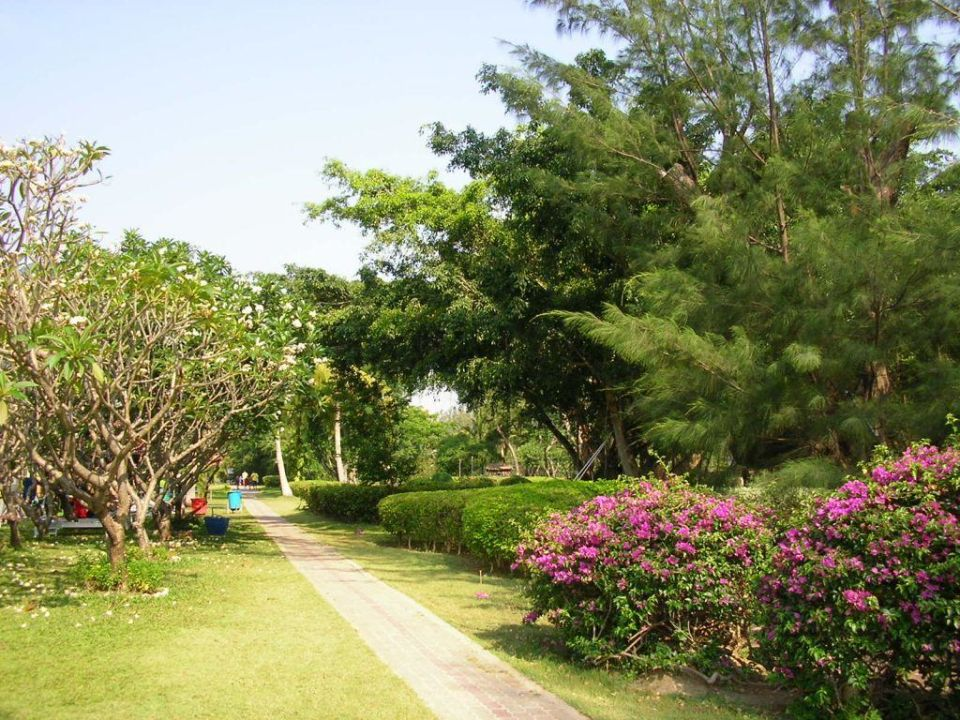 Gartenansicht Hotel Beach Cha Am