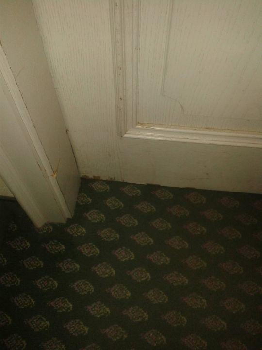 Tür duden  Eine Tür