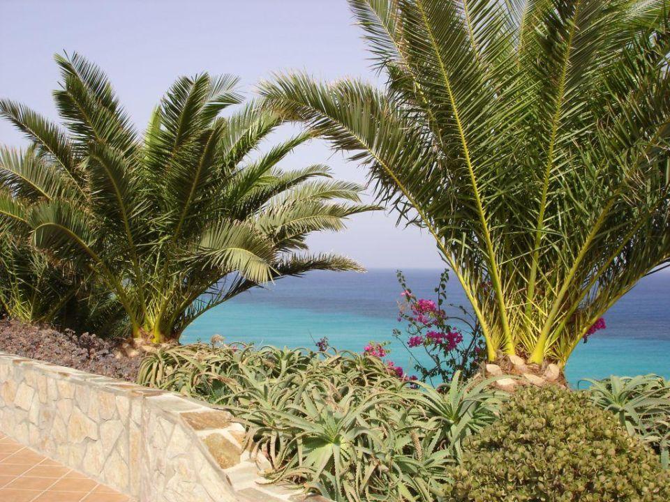 Meeresblick SBH Club Paraiso Playa