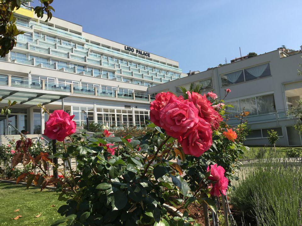 Gartenanlage Maslinica Hotels & Resorts