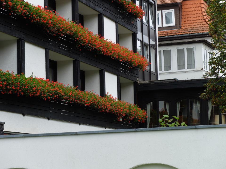 au enansicht m hl vital resort bad lauterberg holidaycheck niedersachsen deutschland. Black Bedroom Furniture Sets. Home Design Ideas