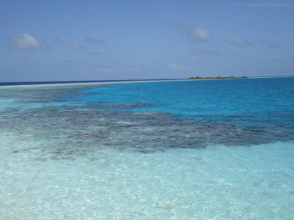 Traumhaft dieses Wasser mit den Korallenbänken Sun Aqua Vilu Reef Maldives