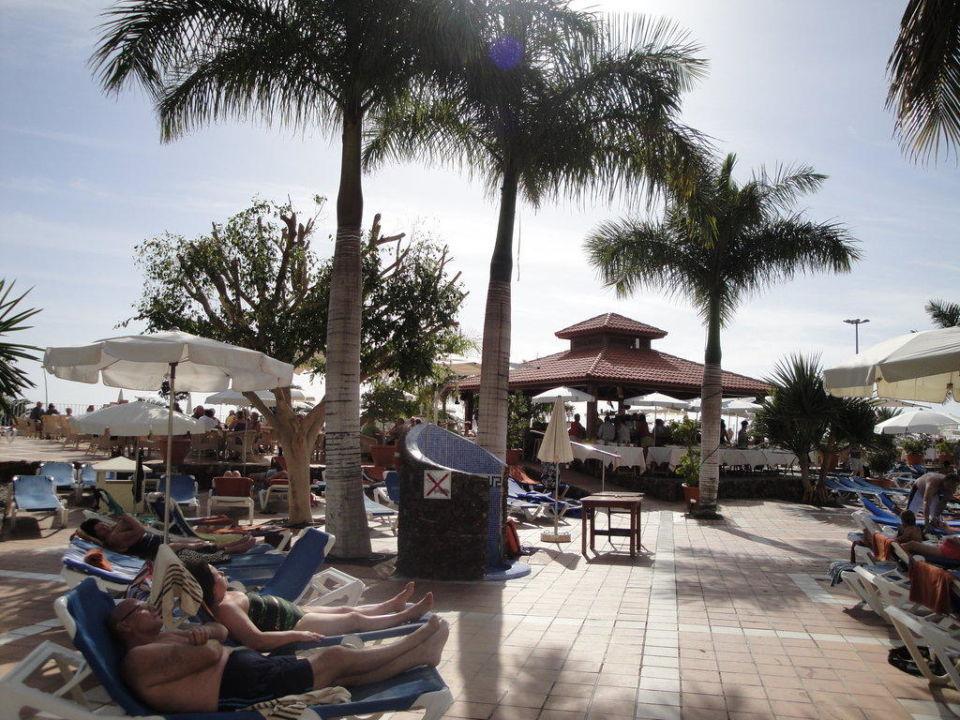 Gartenanlage mit Poolbar SENTIDO Buganvilla Hotel & Spa
