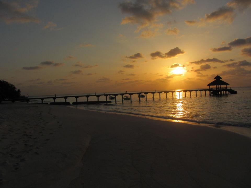 Hotelsteg Hotel Reethi Beach Resort