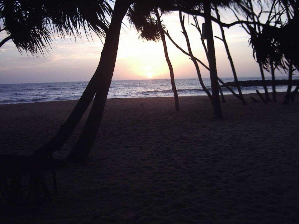 Sonnenuntergang Hotel Ranweli Holiday Village
