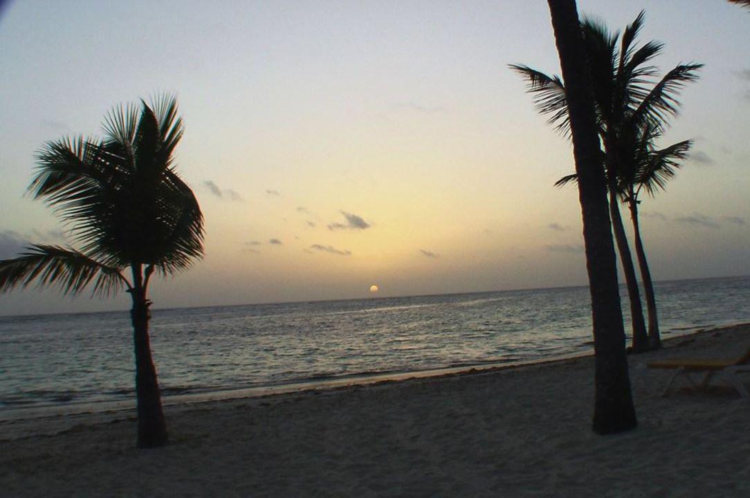 Sonnenaufgang Catalonia Bavaro Beach, Golf & Casino Resort