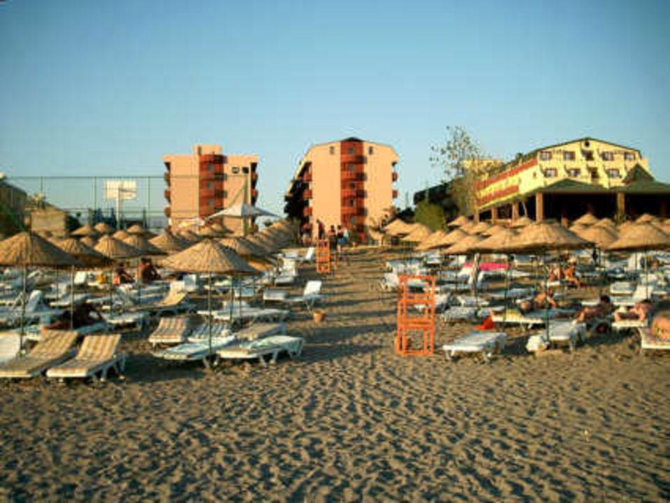 Hotelansicht vom Strand aus Hotel Concordia Celes