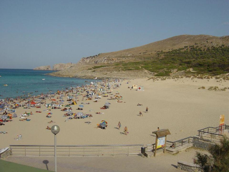 Blick zur Bucht Hotel Viva Cala Mesquida Resort