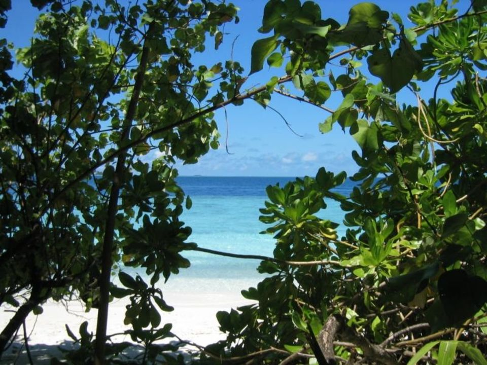 Blick aufs Meer Hotel Fihalhohi Island Resort