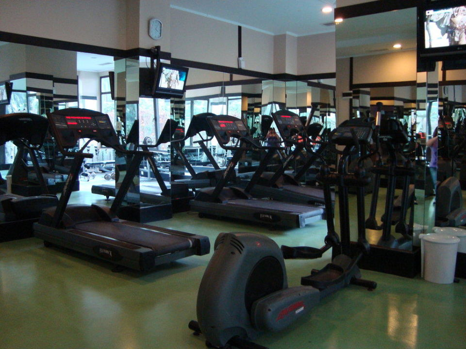 bus303 persuasive memo fitness center Browse thousands of essays from our giant database of academic papers find assignments like form over substance.
