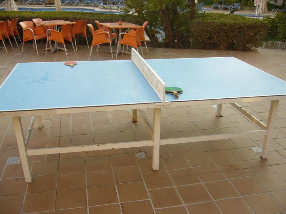Tischtennis Zafiro Tropic